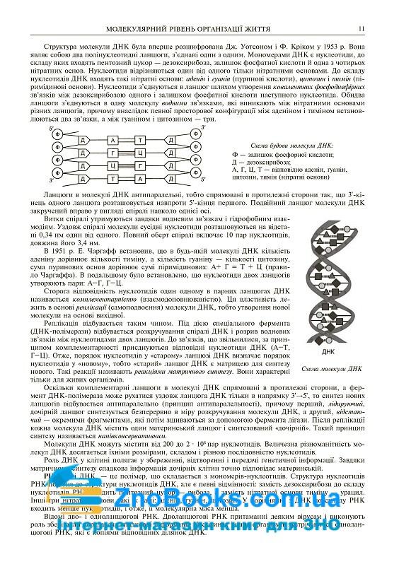 Біологія ЗНО 2022 : комплексне видання: Олійник І. В. Навчальна книга - Богдан. купити 10