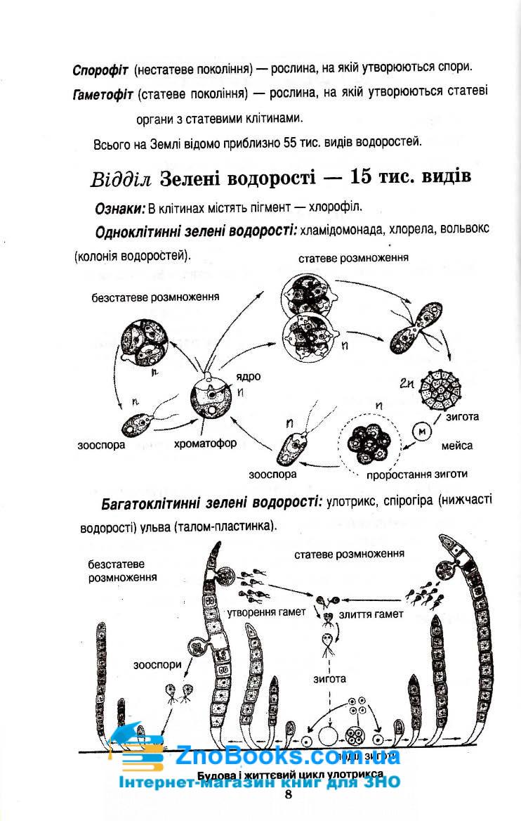 Біологія в поняттях, таблицях і схемах : Сухолин Н. Логос. купити 8