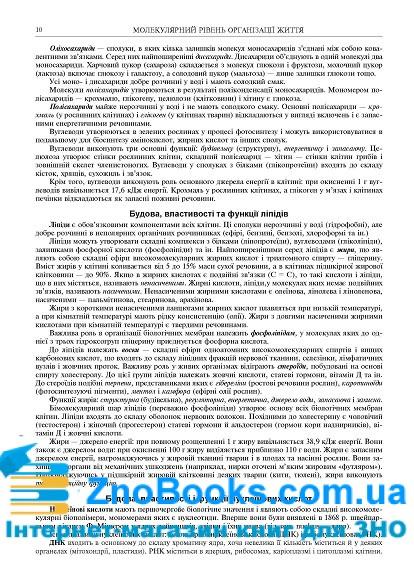 Біологія ЗНО 2022 : комплексне видання: Олійник І. В. Навчальна книга - Богдан. купити 9