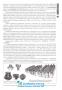 Історія України. Довідник для абітурієнтів та школярів до ЗНО : Кульчицький С. Літера. (видання 7-ме 2020 р. ) купити - 7