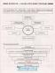 Таблиці та схеми. Біологія : Кравченко М. Торсінг. купити - 4