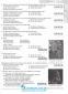 Українська мова і література ЗНО 2022. Комплексна підготовка : Терещенко В. та ін. Генеза. купити - 7