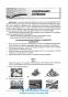 Англійська мова ЗНО 2021. Довідник + тести. Повний повторювальний курс : Євчук О., Доценко І. Абетка. купити - 10