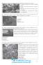 800 візуальних тестових завдань до ЗНО. Історія України 7 клас : Брецко Ф. Мандрівець. купити - 8