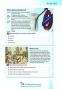 Тренажер для підготовки до ЗНО з англійської мови  level A2+аудіо : Юркович М.  Лібра терра. купити - 4